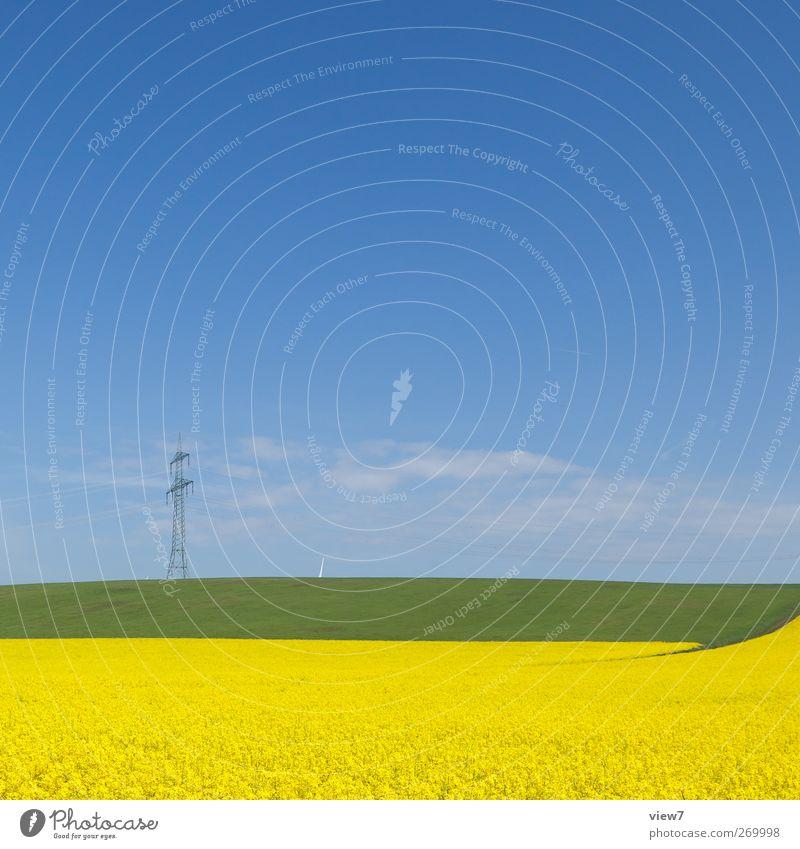 sommerlich Natur Pflanze Umwelt gelb Landschaft Deutschland groß Energie authentisch Hoffnung Schönes Wetter Sehnsucht Landwirtschaft Strommast Ackerbau Heimat