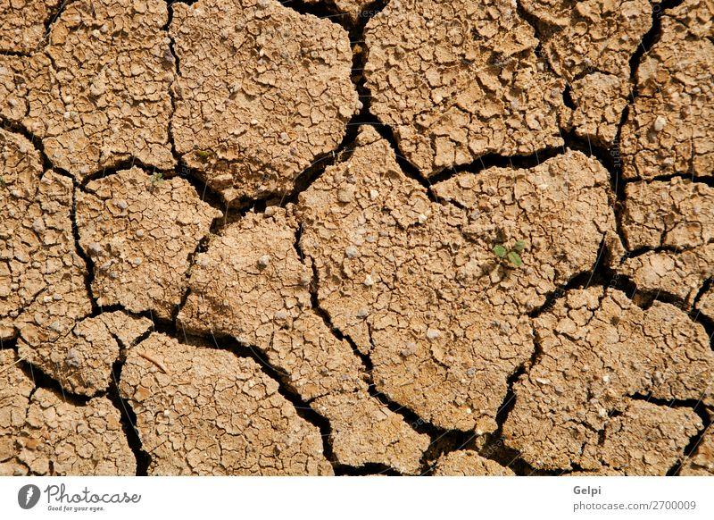 Natur Sommer Sonne Umwelt natürlich Tod braun Sand Wetter Erde dreckig Klima Boden heiß Riss Oberfläche