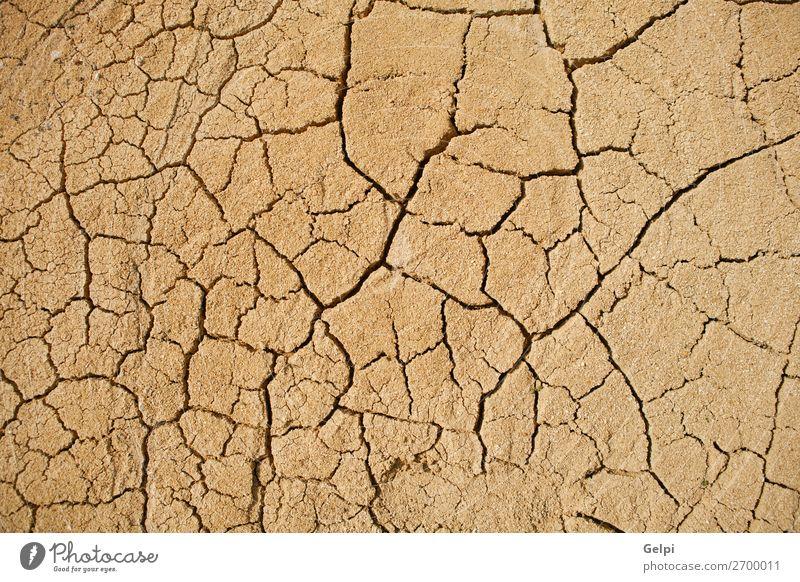 Die Textur ist gerissen, die Erdoberfläche ist trocken. Sommer Sonne Umwelt Natur Erde Sand Klima Klimawandel Wetter Dürre dreckig heiß natürlich braun Tod