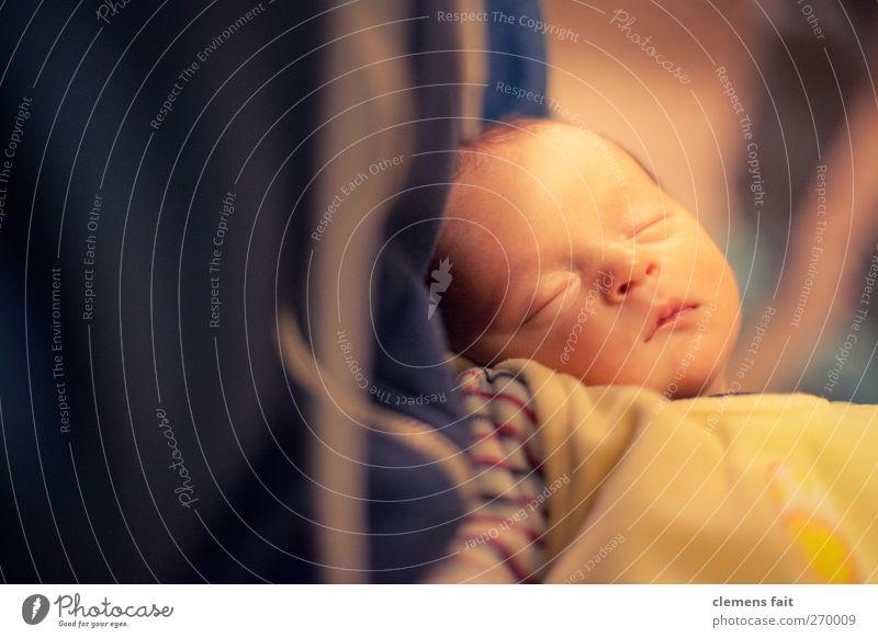 Zum ersten Mal den Neffen treffen Kind schön ruhig Gesicht Baby schlafen niedlich Frieden Kleinkind tief friedlich Enkel Mensch neugeboren