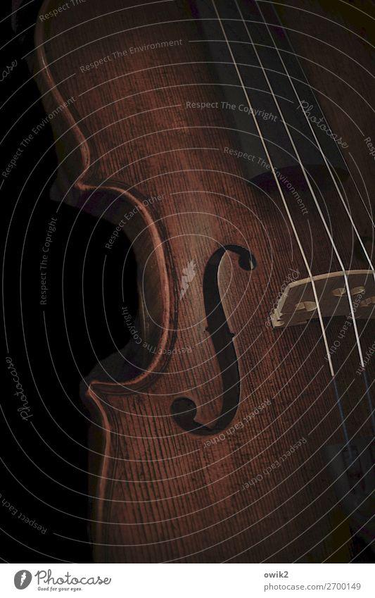 Sonate in F Musik Geige Saiteninstrumente Holz elegant Zarge F-Loch Schalloch Farbfoto Gedeckte Farben Innenaufnahme Nahaufnahme Menschenleer Textfreiraum links