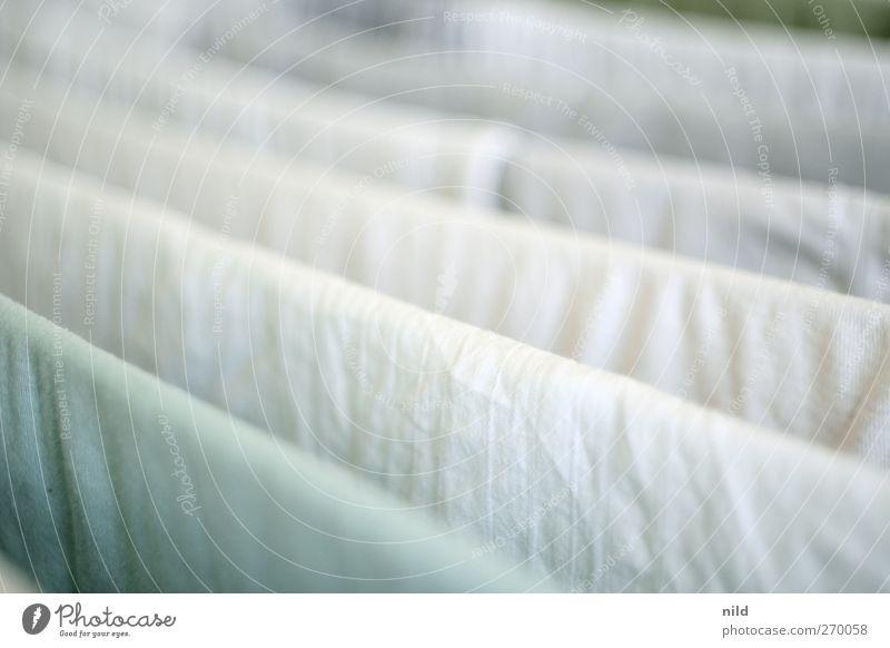 Waschtag weiß hell frisch Bekleidung Stoff T-Shirt weich Sauberkeit Falte Hemd Wäsche waschen Wäsche aufhängen Wäscheständer