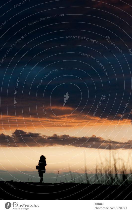 Hiddensee | Dawn at dusk Mensch Frau Natur blau Sonne Pflanze Sommer Wolken Erwachsene Umwelt Landschaft dunkel feminin Leben Stimmung gehen