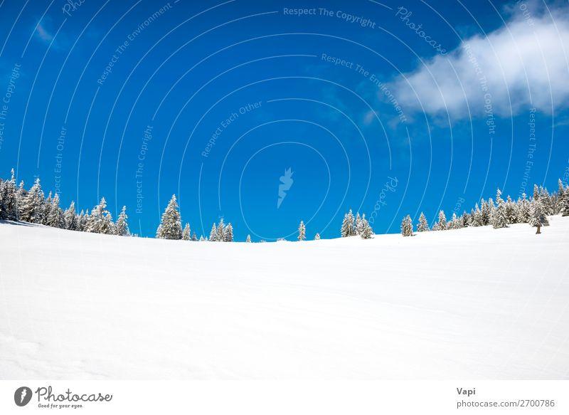 Himmel Ferien & Urlaub & Reisen Natur Weihnachten & Advent blau schön weiß Landschaft Sonne Baum Wolken Wald Winter Ferne Berge u. Gebirge schwarz