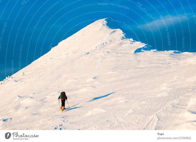 Bergsteiger mit Hund beim Klettern auf den Berggipfel Lifestyle Freizeit & Hobby Ferien & Urlaub & Reisen Tourismus Ausflug Abenteuer Ferne Freiheit Expedition