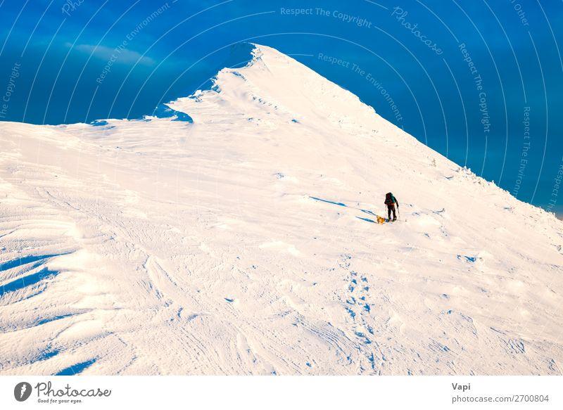 Mensch Himmel Ferien & Urlaub & Reisen Natur Hund Mann blau weiß Landschaft Sonne Wolken Einsamkeit Winter Berge u. Gebirge schwarz Lifestyle