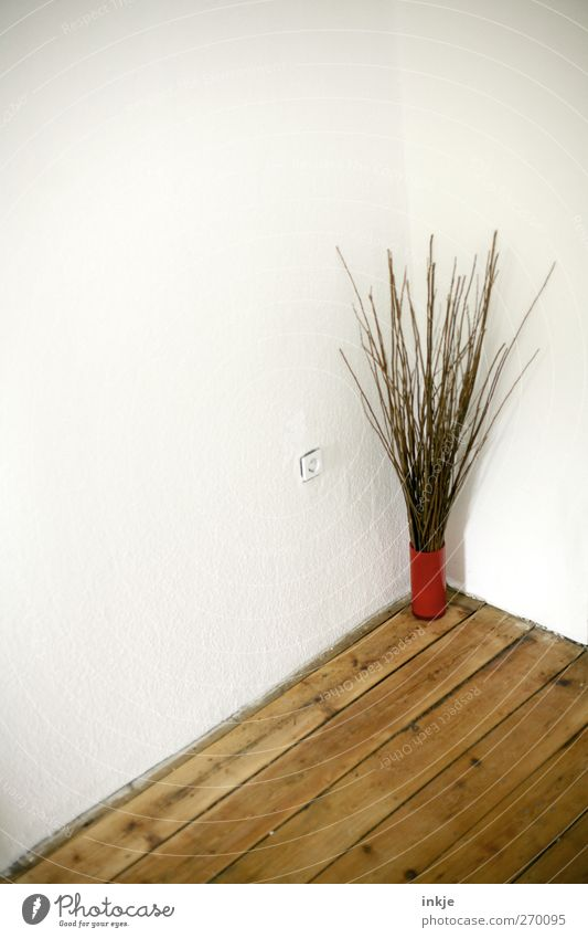 Sieh einmal, hier steht er - Pfui! Der Struwwelpeter! Einsamkeit Wand Gefühle Mauer Stimmung Raum stehen Häusliches Leben Dekoration & Verzierung trist Ecke Ast