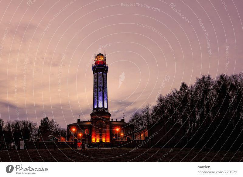 lighthouse Himmel Baum ruhig schwarz Wald Landschaft rosa leuchten Romantik Wahrzeichen Leuchtturm Nachthimmel