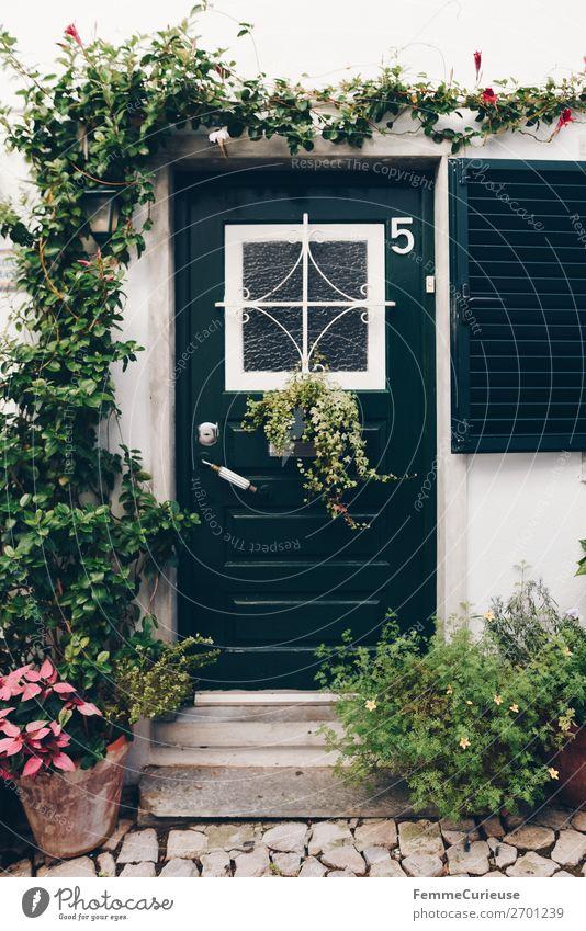 Door in Portugal Ferien & Urlaub & Reisen Pflanze Haus Reisefotografie Häusliches Leben Dekoration & Verzierung Tür dunkelgrün