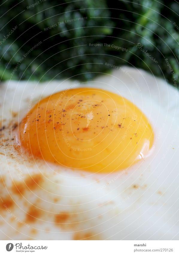 Spiegelei zum Frühstück Lebensmittel Ernährung Mittagessen Abendessen gelb grün weiß Ei Spinat Protein Eigelb Würzig Appetit & Hunger lecker geschmackvoll
