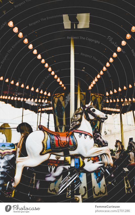 Illuminated horse carousel Freizeit & Hobby Bewegung Karussellpferd Glühbirne Beleuchtung mehrfarbig Attraktion Jahrmarkt Farbfoto Außenaufnahme Kunstlicht