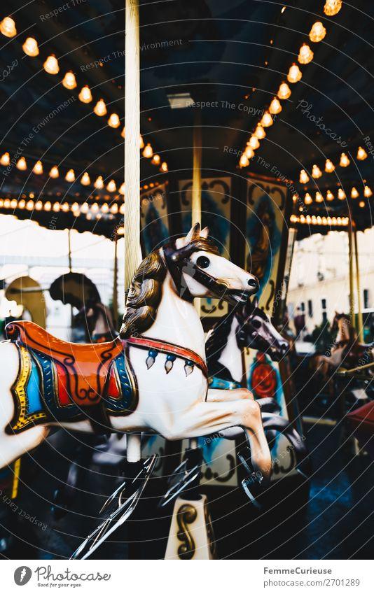 Illuminated horse carousel Freizeit & Hobby Bewegung Karussellpferd Jahrmarkt drehen Beleuchtung Attraktion Farbfoto Außenaufnahme Kunstlicht Zentralperspektive