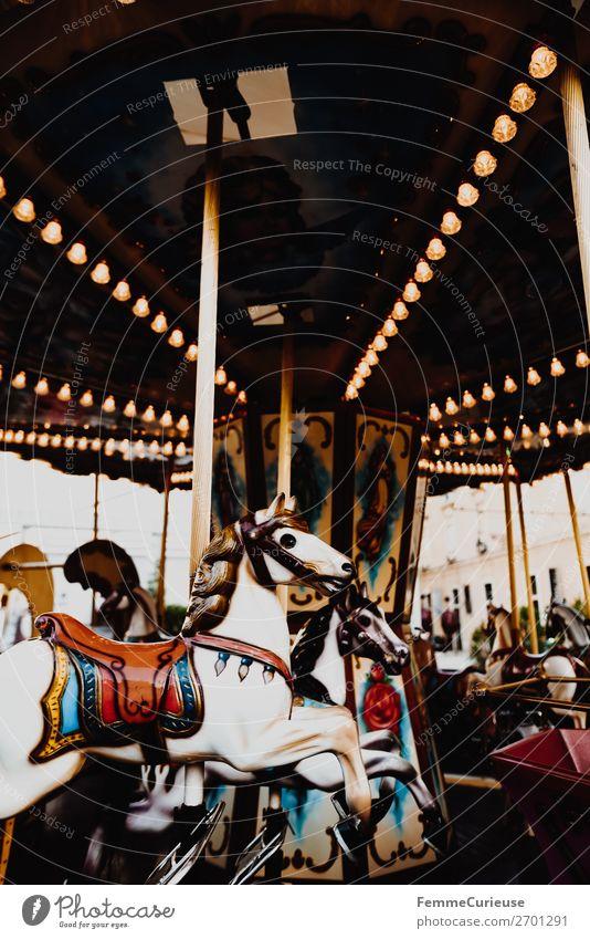 Illuminated horse carousel Freizeit & Hobby Bewegung Karussellpferd Attraktion Jahrmarkt drehen Beleuchtung Glühbirne Farbfoto Außenaufnahme Kunstlicht