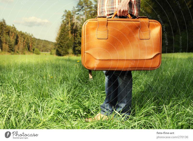 Ankunft Mensch maskulin Junger Mann Jugendliche 1 18-30 Jahre Erwachsene Natur Landschaft Sommer Baum Gras Wald Hemd Jeanshose Koffer Schuhe Leder skurril