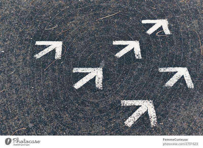 Arrows on pedestrian path Zeichen Schriftzeichen Kommunizieren Pfeile aufwärts Richtung richtungweisend Richtungswechsel weiß Fußweg Farbfoto Außenaufnahme