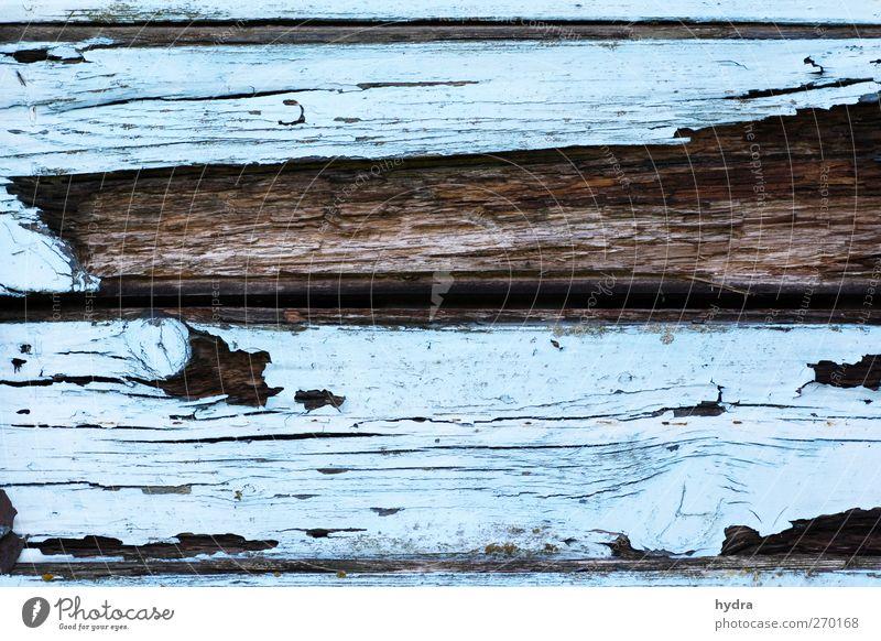 Bessere Zeiten Renovieren Wand Holzwand Wandtäfelung Anstreicher Hütte Ruine Mauer Fassade alt kaputt blau braun Endzeitstimmung Vergänglichkeit verwittert