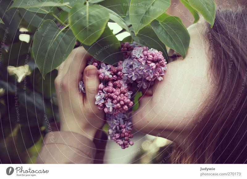 Intensiv Mensch Natur Jugendliche schön Pflanze Umwelt feminin Gefühle Frühling Haare & Frisuren Junge Frau Kopf Blüte Zufriedenheit natürlich 13-18 Jahre