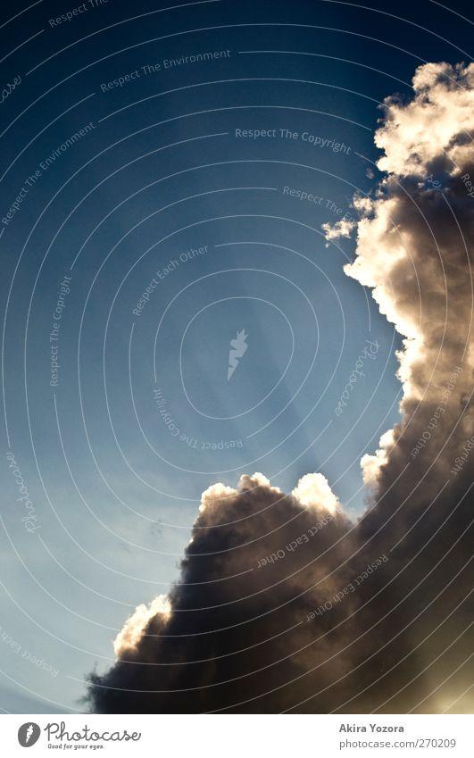 Himmel auf Himmel blau weiß Sonne Wolken Umwelt grau hell Wetter leuchten Schönes Wetter berühren Optimismus Schatten