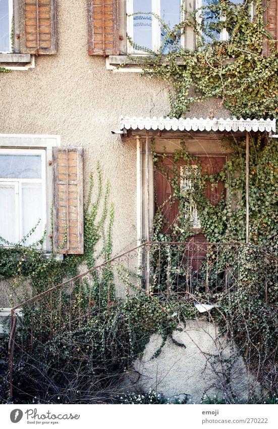 hinein gehen alt Haus Fenster Wand Mauer Tür Fassade Treppe Efeu