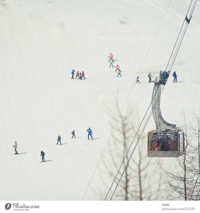 Skihasis Mensch Natur Ferien & Urlaub & Reisen weiß Winter Landschaft Umwelt Berge u. Gebirge kalt Schnee klein Freizeit & Hobby authentisch Tourismus