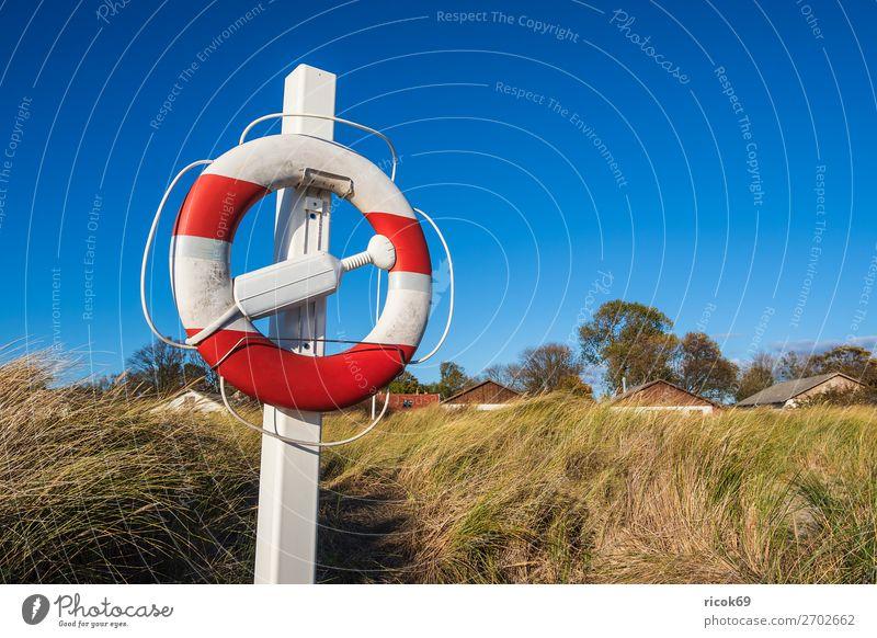 Ostseeküste bei Klintholm Havn in Dänemark Ferien & Urlaub & Reisen Natur blau grün Landschaft Meer Haus Erholung Wolken Strand Architektur Herbst Umwelt Küste