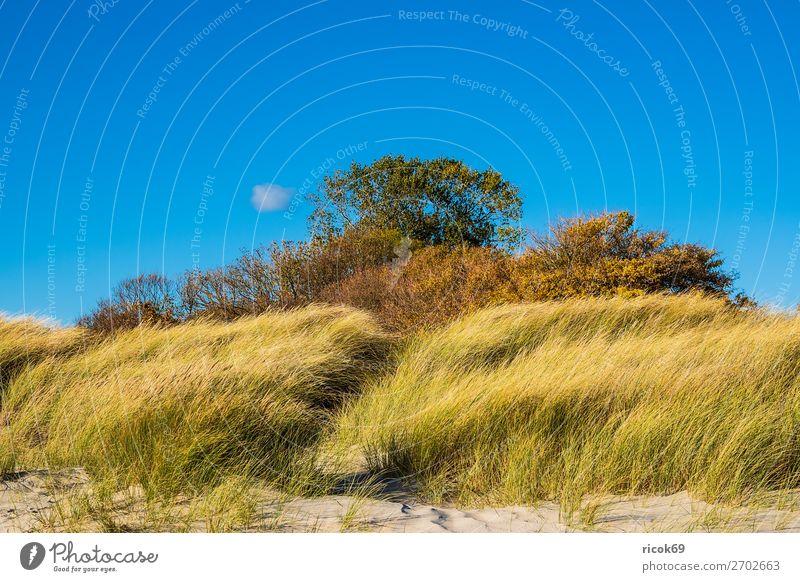 Ostseeküste bei Klintholm Havn in Dänemark Ferien & Urlaub & Reisen Tourismus Strand Meer Natur Landschaft Wolken Herbst Gras Küste blau grün Idylle Umwelt Moen