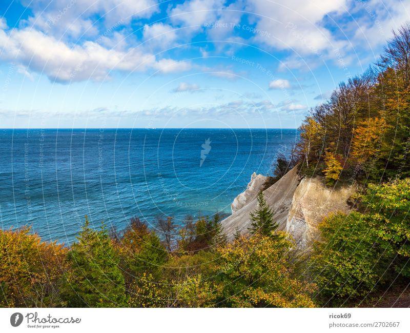Ostseeküste auf der Insel Moen in Dänemark Erholung Ferien & Urlaub & Reisen Tourismus Strand Meer Natur Landschaft Wasser Wolken Herbst Baum Wald Felsen Küste