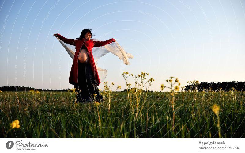 In froher Erwartung Mensch Himmel Jugendliche blau weiß grün rot Erwachsene feminin Frühling Wind Feld frei 18-30 Jahre Wachstum Zukunft