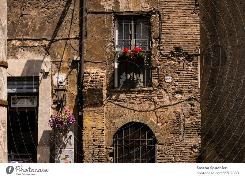 Haus 3339 Rom Italien Europa Altstadt Architektur Mauer Wand Fassade Balkon Fenster Tür Stadt Ferien & Urlaub & Reisen Farbfoto Gedeckte Farben Außenaufnahme