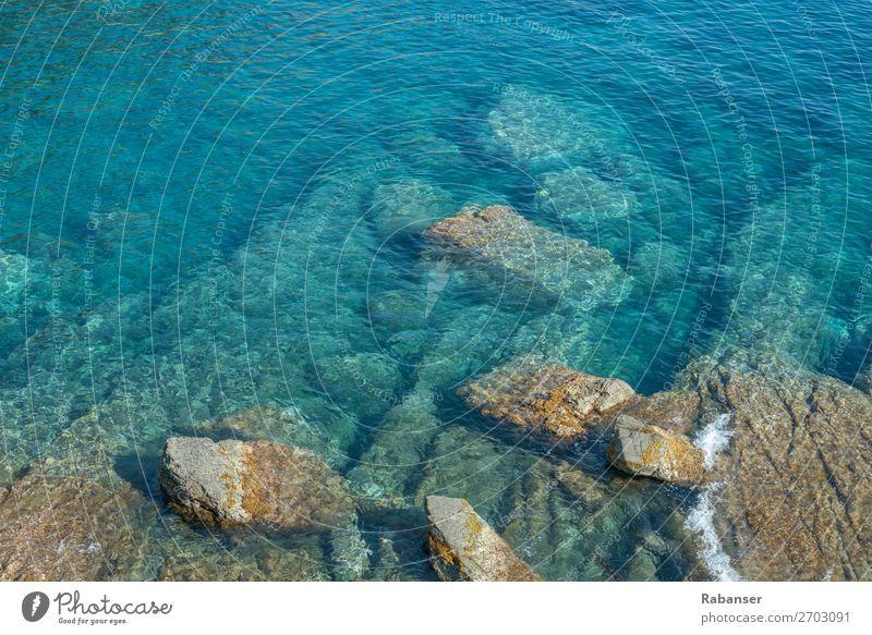 Ligurische Schönheit Umwelt Natur Wasser Sommer Wellen Küste Seeufer Bucht Meer Flüssigkeit frisch Sauberkeit blau Italien Ligurien Stein türkis weiß