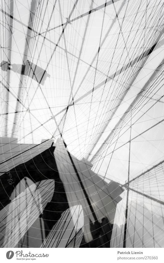 Out of reality Stadt Architektur Gebäude Kunst außergewöhnlich elegant Design modern ästhetisch Brücke Netzwerk Kommunizieren USA Kreativität Bauwerk dünn