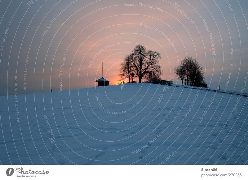 Sonnenuntergang Umwelt Natur Landschaft Himmel Nachthimmel Sonnenaufgang Winter Wetter Wind Baum Wiese Hütte Wege & Pfade dunkel Unendlichkeit Stimmung ruhig