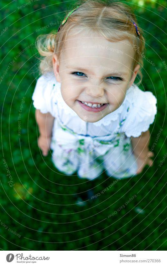 grinsekatze Kleid Haarspange blond kurzhaarig Locken Lächeln frech Fröhlichkeit Glück schön listig nah niedlich klug Stimmung Freude Zufriedenheit Lebensfreude