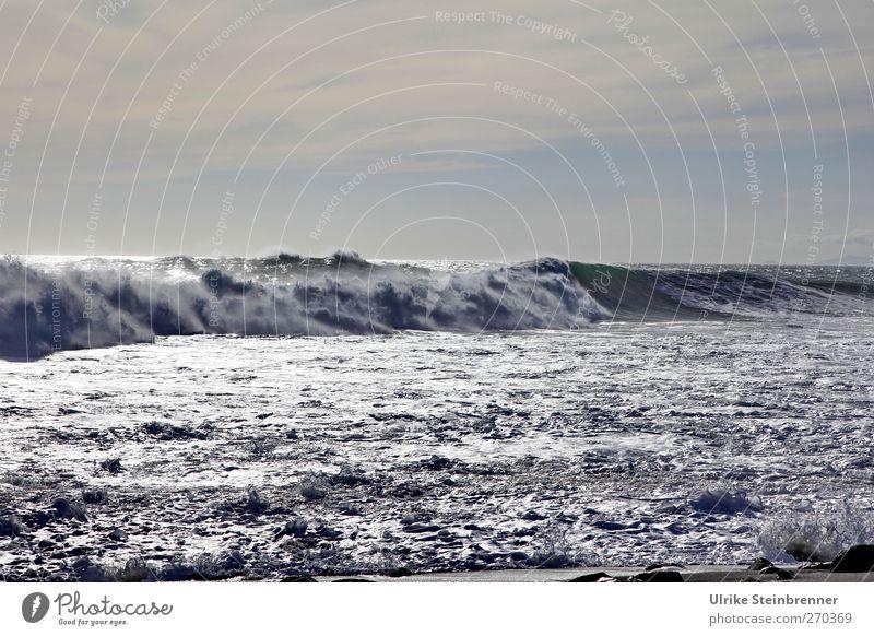 Brecher III Natur Wasser Ferien & Urlaub & Reisen Meer Einsamkeit Wolken Umwelt dunkel Bewegung Frühling Küste grau Wellen wild Insel nass
