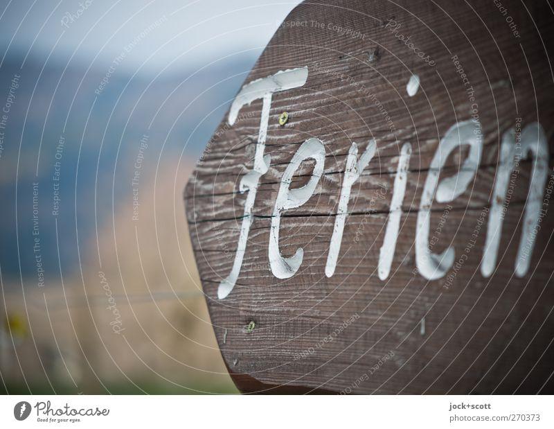 Ferien Ferien & Urlaub & Reisen Ausflug Tier Schönes Wetter Holz Schriftzeichen Schilder & Markierungen Hinweisschild Warnschild Pfeil einfach fest nah braun