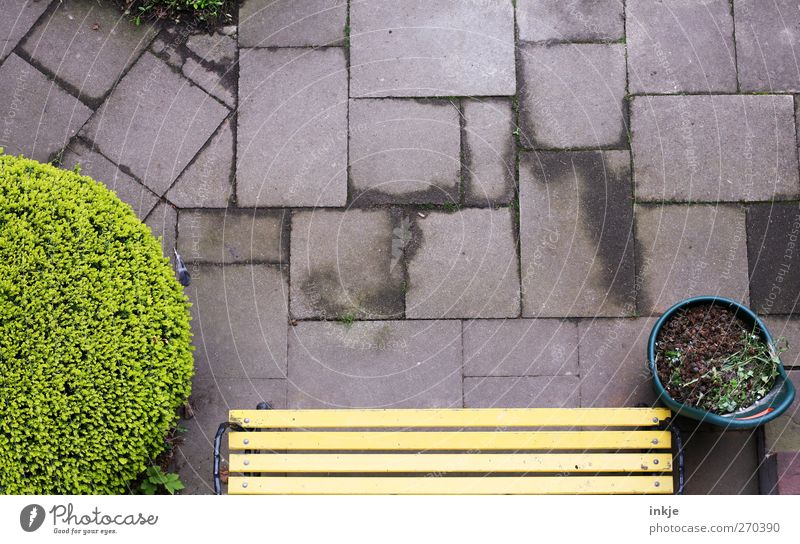 das Fenster zum Hof Gefühle Garten Stimmung Ordnung Beton Häusliches Leben Perspektive Sträucher Pause Bank Quadrat Terrasse Gartenarbeit Rechteck fleißig Bodenplatten