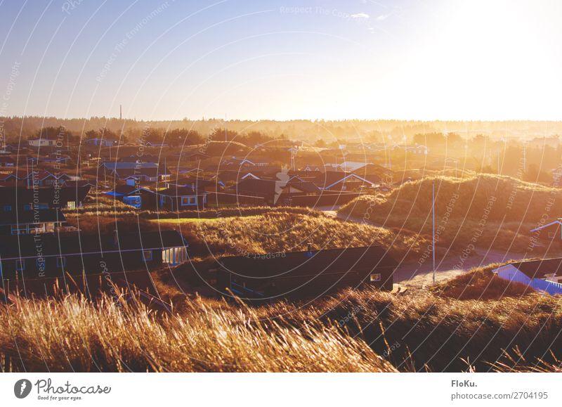 Urlaubsstimmung Ferien & Urlaub & Reisen Tourismus Sommerurlaub Umwelt Natur Küste Nordsee Blokhus Dänemark Europa Dorf Haus gold Stimmung Ferienhaus Düne