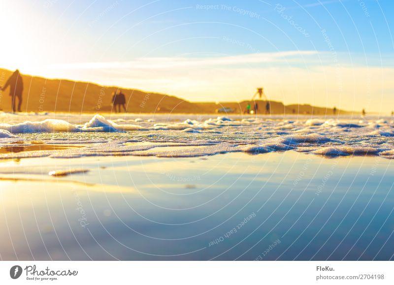 Dänische Küste in der Wintersonne Ferien & Urlaub & Reisen Tourismus Ausflug Strand Meer Umwelt Natur Urelemente Erde Wasser Himmel Sonne Sonnenlicht