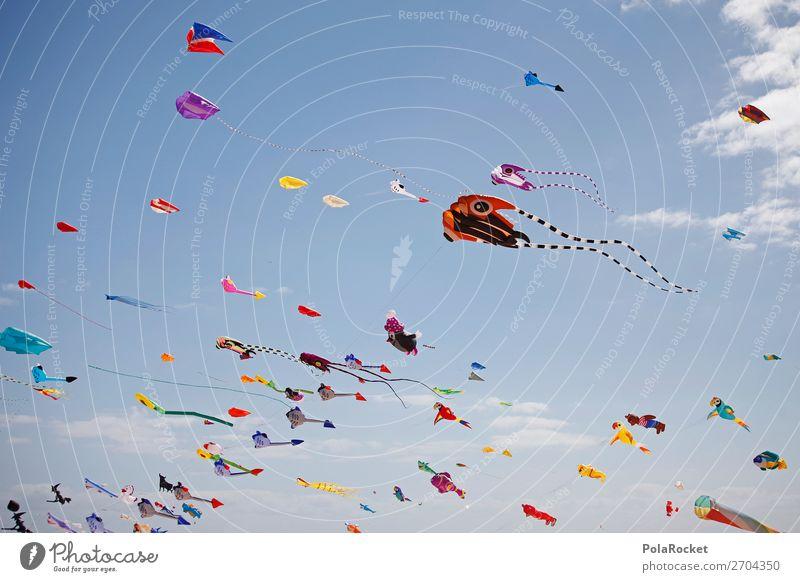 #AS# Drachen-Tag Kind Himmel Freude Kunst Kindheit ästhetisch Kindheitserinnerung Veranstaltung positiv Festspiele Musikfestival Lenkdrachen Hängegleiter