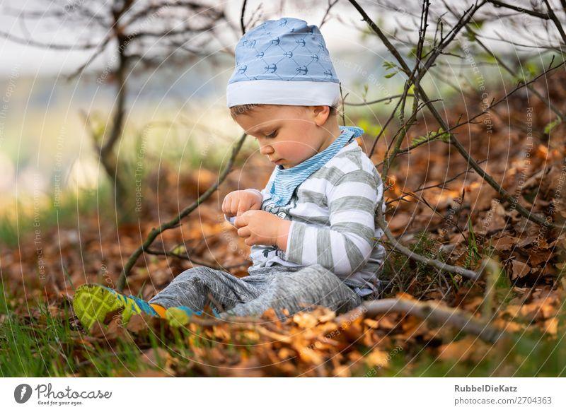 AmWaldrand Mensch maskulin Kind Bruder Familie & Verwandtschaft Kindheit 1 1-3 Jahre Kleinkind Umwelt Natur Herbst Schönes Wetter Wiese Mütze Holz berühren