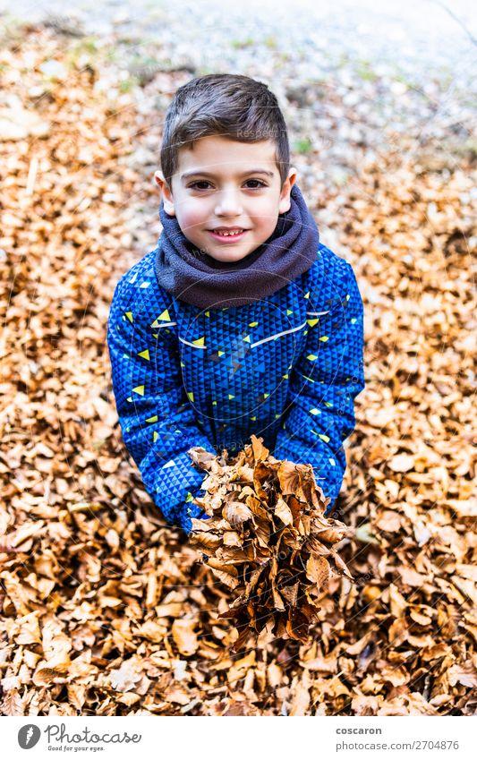 Kind Mensch Ferien & Urlaub & Reisen Natur Pflanze Farbe schön rot Hand Baum Erholung Blatt Freude Wald Winter Berge u. Gebirge