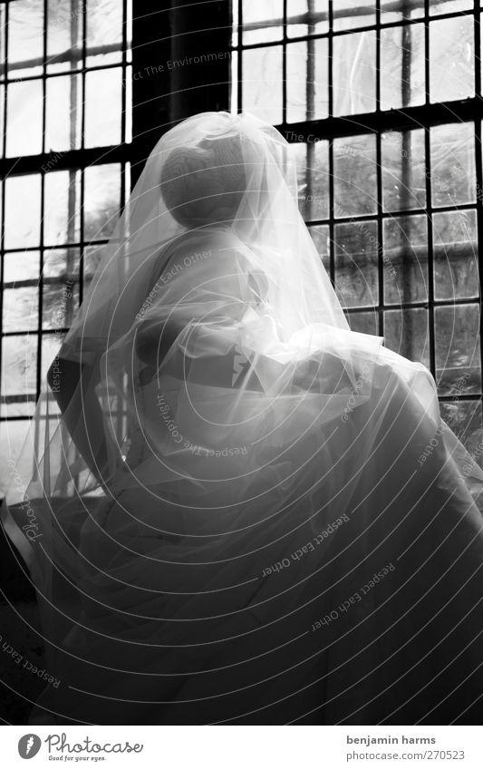 Wedding Day Hochzeit feminin Junge Frau Jugendliche 1 Mensch 18-30 Jahre Erwachsene Kirche Dom Fenster Brautkleid Brautschleier Dutt Blick stehen elegant Liebe