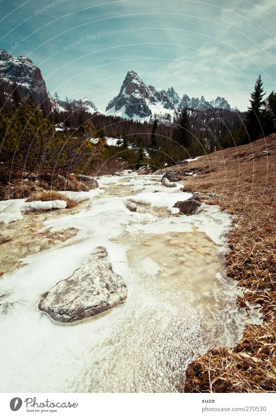 Frühlingserwachen Himmel Natur Wasser Baum Pflanze Umwelt Landschaft Schnee Berge u. Gebirge Stein Erde Klima Urelemente Alpen Idylle