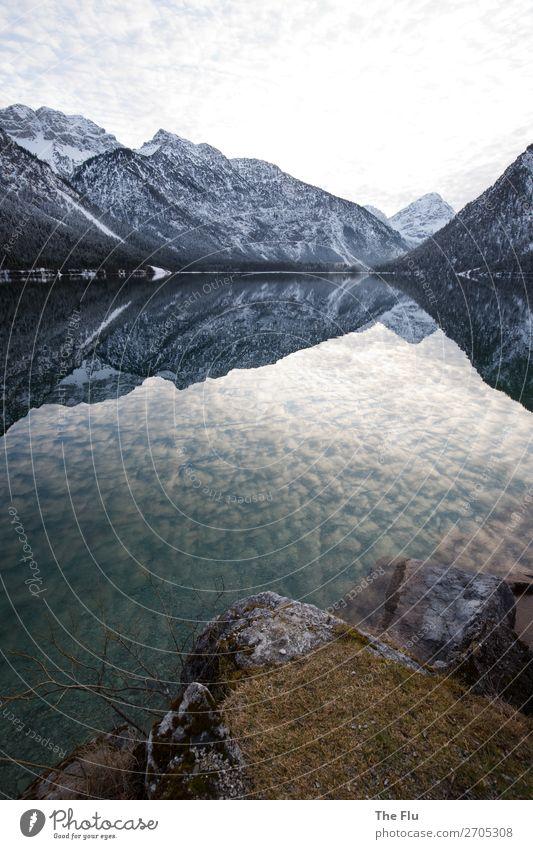 Winterlicher Plansee in Tirol Schnee Winterurlaub Berge u. Gebirge wandern Natur Landschaft Wasser Himmel Wolken Schönes Wetter Felsen Alpen Gipfel