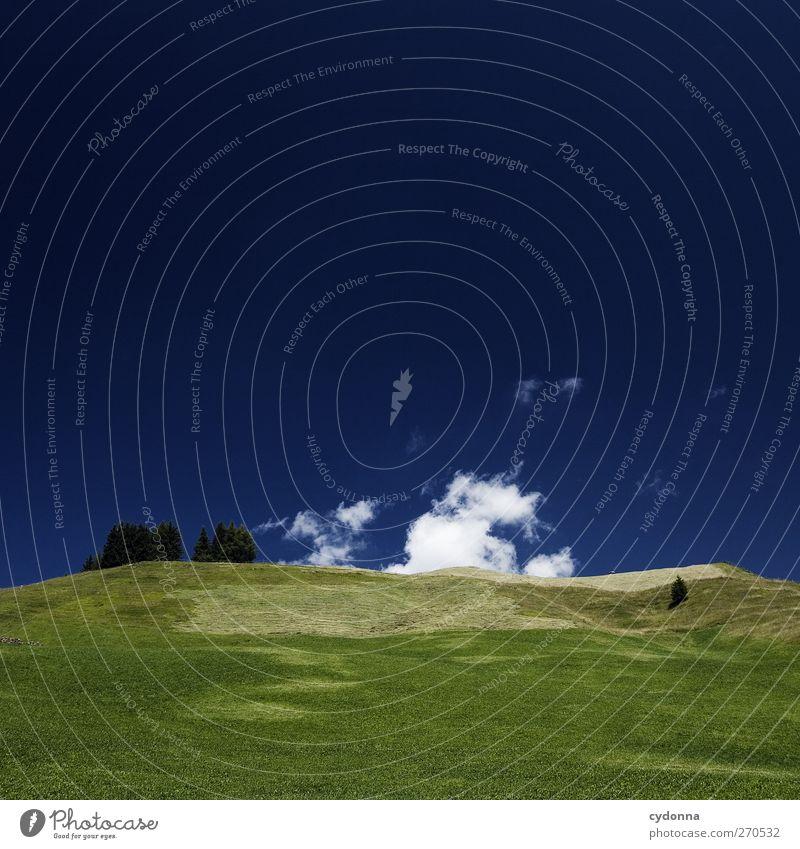 Tiefblau harmonisch Erholung ruhig Ferien & Urlaub & Reisen Ausflug Abenteuer Ferne Freiheit Umwelt Natur Landschaft Himmel Wolken Sommer Baum Wiese Hügel Alpen