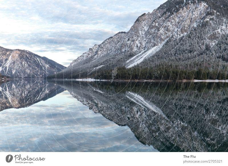 Vice versa Natur Landschaft Pflanze Wasser Himmel Wolken Winter Schönes Wetter Schnee Alpen Berge u. Gebirge Gipfel Schneebedeckte Gipfel Seeufer Plansee
