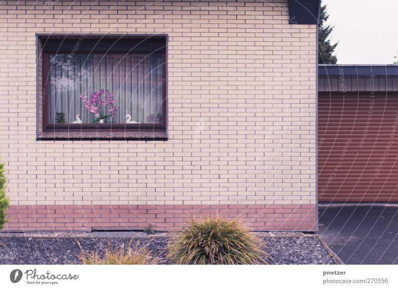 Nachbarschaft II Stadt Haus Fenster Wand Architektur Garten Mauer Zufriedenheit Fassade Häusliches Leben Dekoration & Verzierung Bauwerk Tor Schwan Garage