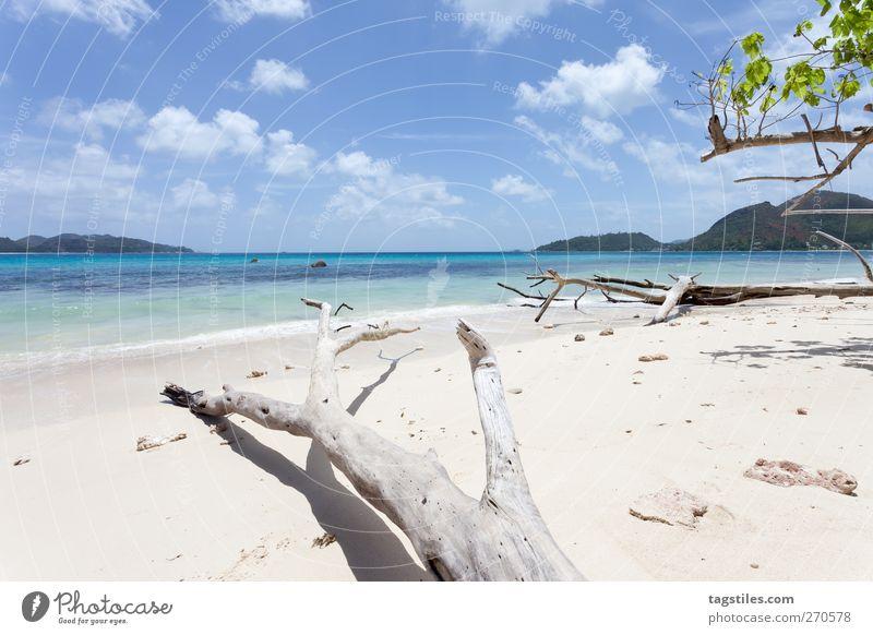 PRASLIN - SEYCHELLES Praslin Seychellen Ferien & Urlaub & Reisen Reisefotografie Strand Küste Sand Meer Insel Natur Landschaft Afrika Tourismus unberührt