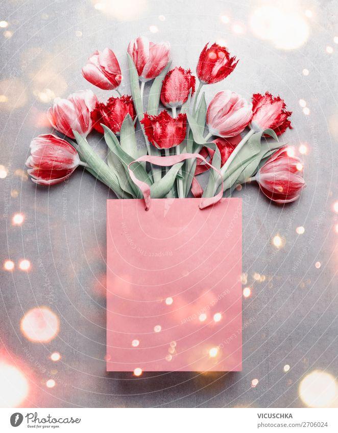 Rote Tulpen in der Geschenktüte. kaufen Design Feste & Feiern Valentinstag Muttertag Geburtstag Natur Pflanze Frühling Blume Dekoration & Verzierung
