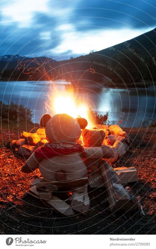 Zwei Teddybären am Lagerfeuer / Symbolik Freundschaft Ferien & Urlaub & Reisen Abenteuer Freiheit Camping Sommer Team Natur Landschaft Urelemente Schönes Wetter